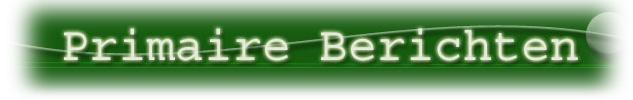 Logo Primaire Berichten